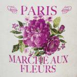 Paris Fleurs